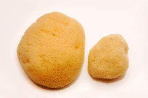 natural alternative to menstrual pads and tampons - large sponges